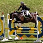 Royal Bermuda Ascot Garden Party & Horse Show Equestrian  Bermuda May 15 2011-1-36