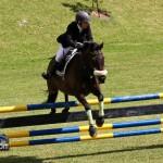 Royal Bermuda Ascot Garden Party & Horse Show Equestrian  Bermuda May 15 2011-1-39
