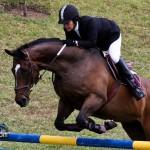 Royal Bermuda Ascot Garden Party & Horse Show Equestrian  Bermuda May 15 2011-1-4