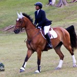 Royal Bermuda Ascot Garden Party & Horse Show Equestrian  Bermuda May 15 2011-1-42