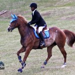 Royal Bermuda Ascot Garden Party & Horse Show Equestrian  Bermuda May 15 2011-1-49