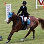 Royal Bermuda Ascot Garden Party & Horse Show Equestrian  Bermuda May 15 2011-1-50