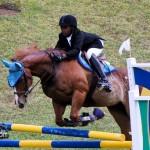 Royal Bermuda Ascot Garden Party & Horse Show Equestrian  Bermuda May 15 2011-1-52