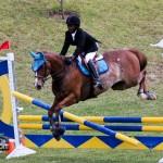 Royal Bermuda Ascot Garden Party & Horse Show Equestrian  Bermuda May 15 2011-1-53