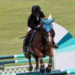Royal Bermuda Ascot Garden Party & Horse Show Equestrian  Bermuda May 15 2011-1-58