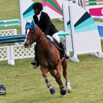 Royal Bermuda Ascot Garden Party & Horse Show Equestrian  Bermuda May 15 2011-1-59