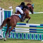 Royal Bermuda Ascot Garden Party & Horse Show Equestrian  Bermuda May 15 2011-1-60