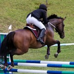 Royal Bermuda Ascot Garden Party & Horse Show Equestrian  Bermuda May 15 2011-1-9