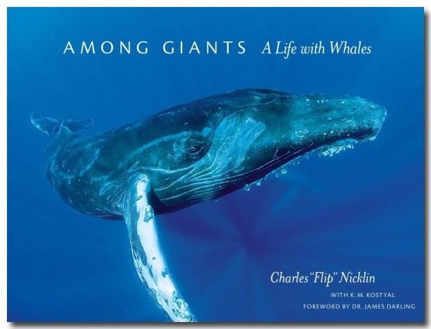 among-giants