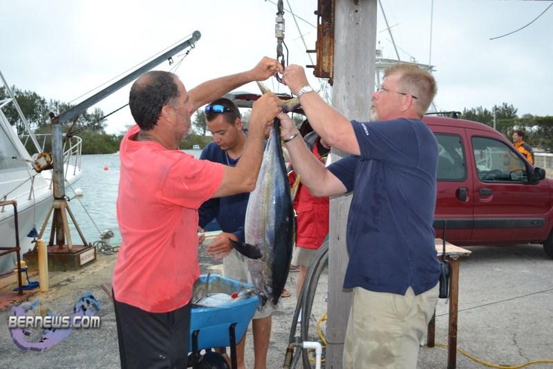 Bermuda fishing tournament june 2011 4 bernews for Fishing in bermuda