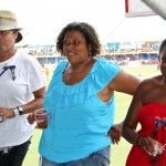 2011 bermuda cup match spectators  (60)