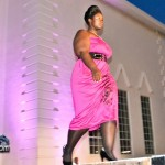 Evolution Fashion Show Bermuda July 16 2011-1-23