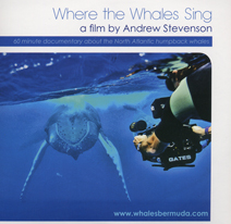 where the whales sing DVV