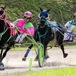 Harness Pony Racing Bermuda October 23 2011-1-11