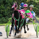 Harness Pony Racing Bermuda October 23 2011-1-15