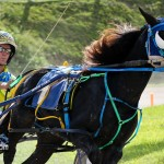 Harness Pony Racing Bermuda October 23 2011-1-17