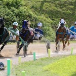 Harness Pony Racing Bermuda October 23 2011-1-23