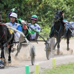 Harness Pony Racing Bermuda October 23 2011-1-5