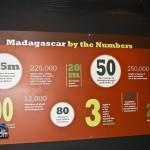 Madagascar Exhibit BAMZ Bermuda November 10 2011-1-11