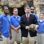 Madagascar Exhibit BAMZ Bermuda November 10 2011-1-9
