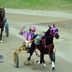2011 boxing day harness pony racing bermuda (1)