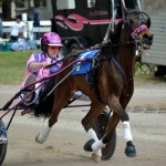 2011 boxing day harness pony racing bermuda (10)