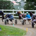 2011 boxing day harness pony racing bermuda (11)