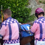 2011 boxing day harness pony racing bermuda (12)