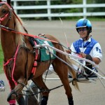 2011 boxing day harness pony racing bermuda (13)