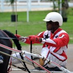 2011 boxing day harness pony racing bermuda (17)