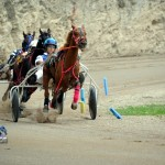 2011 boxing day harness pony racing bermuda (19)