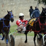 2011 boxing day harness pony racing bermuda (21)