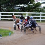 2011 boxing day harness pony racing bermuda (22)