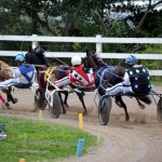 2011 boxing day harness pony racing bermuda (23)