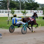 2011 boxing day harness pony racing bermuda (24)