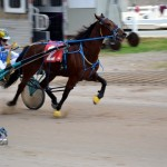 2011 boxing day harness pony racing bermuda (25)
