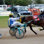 2011 boxing day harness pony racing bermuda (26)