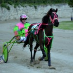 2011 boxing day harness pony racing bermuda (32)