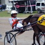 2011 boxing day harness pony racing bermuda (33)