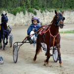 2011 boxing day harness pony racing bermuda (34)