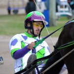 2011 boxing day harness pony racing bermuda (35)