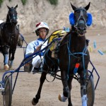 2011 boxing day harness pony racing bermuda (37)