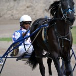 2011 boxing day harness pony racing bermuda (38)