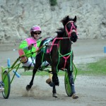 2011 boxing day harness pony racing bermuda (39)