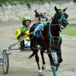 2011 boxing day harness pony racing bermuda (41)