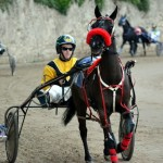 2011 boxing day harness pony racing bermuda (43)