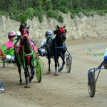 2011 boxing day harness pony racing bermuda (44)