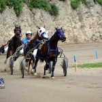 2011 boxing day harness pony racing bermuda (7)