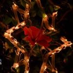 bermuda christmas lights dec 22 2011 (19)