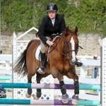 Horse Jumping Bermuda January 22 2011-1-10